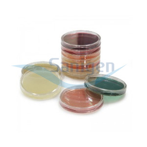 HK Blood agar plate 50개